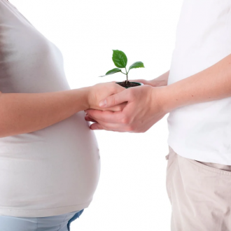 В клинике «Мед-Союз» внедрена новая процедура: внутриматочная инсеминация
