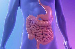 Диагностика и лечение полипов желудка и кишечника
